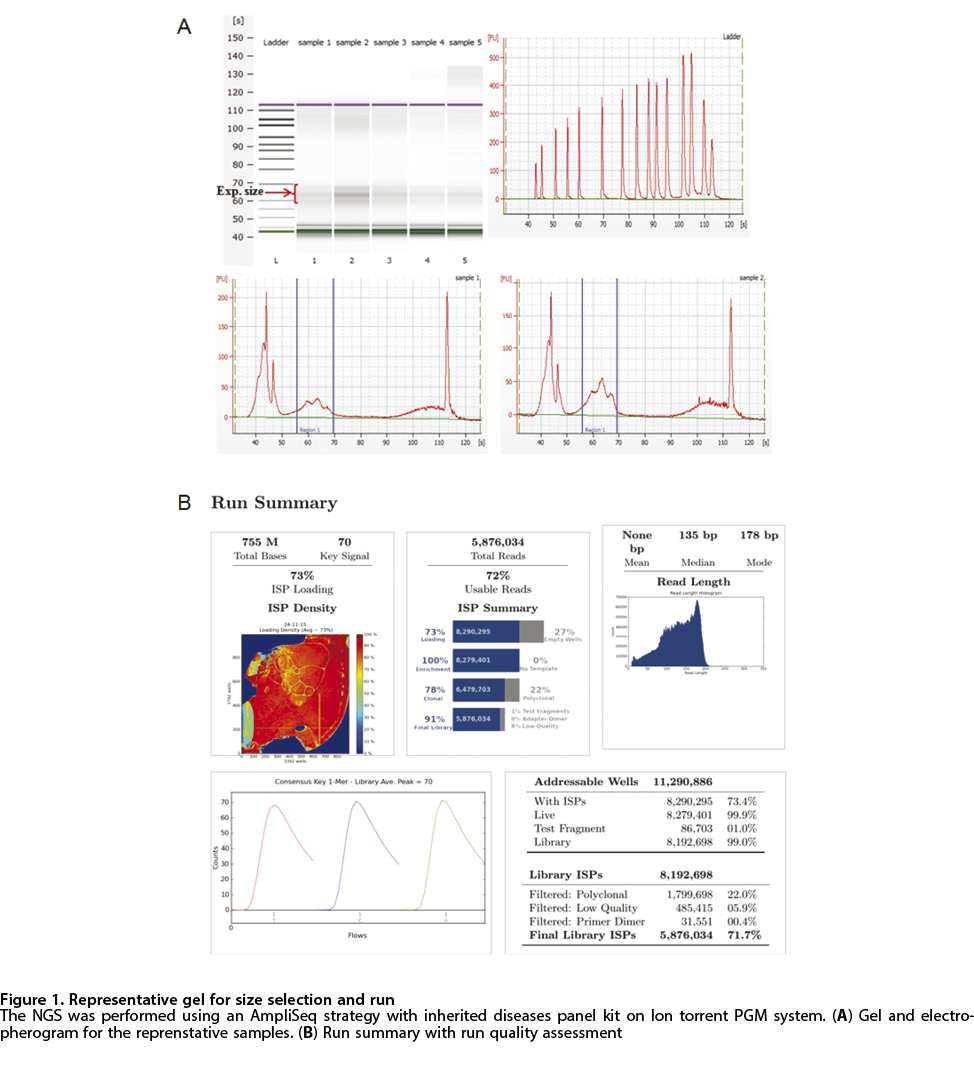View of Identification of six novel factor viii gene